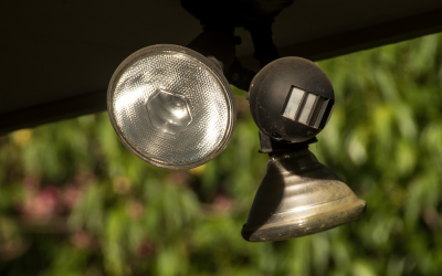 The Best Places for Motion Detectors in your Yard and Home