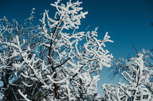 How to Prepare for Ultra-Cold Temperature Electrical Outages